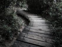 Escalera de bobina de Mabibi Foto de archivo libre de regalías