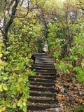 Escalera de bobina en las montañas Fotos de archivo