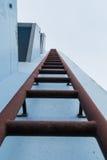 escalera de enchufe del lonh Foto de archivo libre de regalías