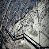 Escalera de la ciudad imagen de archivo libre de regalías