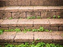 Escalera de la roca Fotografía de archivo libre de regalías