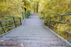 Escalera de madera abajo de la colina Fotografía de archivo