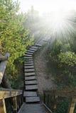 Escalera de madera al cielo Imagen de archivo libre de regalías