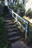 Escalera de madera con la verja de la ayuda de madera Fotografía de archivo libre de regalías