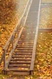 Escalera de madera del otoño con las hojas de arce y la luz inminente del sol Foto de archivo libre de regalías