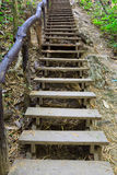 Escalera de madera en el rastro del bosque Foto de archivo
