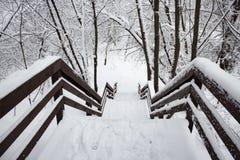 Escalera de madera nevada abajo en el bosque del invierno imagen de archivo libre de regalías