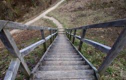 Escalera de madera que lleva abajo Foto de archivo libre de regalías