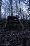 Escalera de madera vieja sobre una pared de piedra, en un bosque en Suecia septentrional Árboles de abedul en el fondo, hojas cai Imagenes de archivo