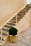 Escalera de Monastary con la planta potted Fotos de archivo