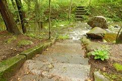 Escalera de piedra al río Foto de archivo libre de regalías