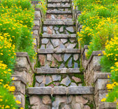 Escalera de piedra cubierta de musgo entre las flores amarillas Imagen de archivo