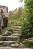 Escalera de piedra que lleva a través de arbustos Imágenes de archivo libres de regalías