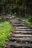 Escalera de piedra vieja en bosque Fotos de archivo