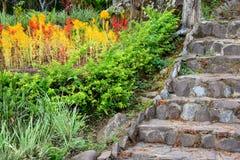 Escalera de piedra vieja en el jardín colorido fotografía de archivo