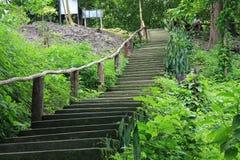 Escalera de Tailandia Asia Imagen de archivo