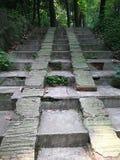 escalera del cemento Fotos de archivo libres de regalías