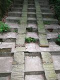 escalera del cemento Imagenes de archivo