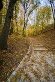 Escalera del otoño en parque del cibulka imagen de archivo