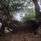 Escalera del phu de Wat fotos de archivo libres de regalías