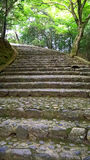 Escalera en el bosque de bambú de la arboleda de Arashiyama, Kyoto Imágenes de archivo libres de regalías