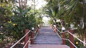 Escalera en el jardín Fotografía de archivo libre de regalías