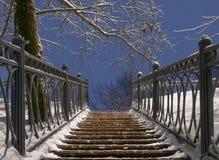 Escalera en el parque del invierno de la noche Imagen de archivo