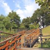 Escalera en el parque Parque del otoño foto de archivo