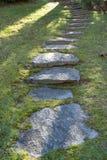 Escalera en hierba Foto de archivo libre de regalías