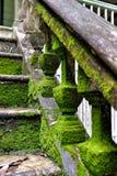 Escalera en la casa abandonada Foto de archivo libre de regalías