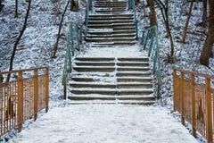 Escalera en parque abandonado en invierno foto de archivo