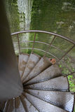 Escalera espiral del hierro Foto de archivo