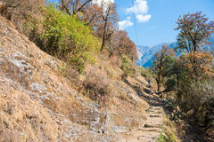 Escalera hacia arriba y hacia abajo en la manera al campo bajo de Annapurna Fotos de archivo libres de regalías