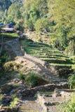 Escalera hacia arriba y hacia abajo en la manera al campo bajo de Annapurna Foto de archivo libre de regalías