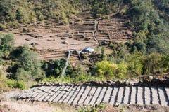 Escalera hacia arriba y hacia abajo en la manera al campo bajo de Annapurna Imágenes de archivo libres de regalías