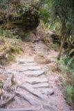 Escalera hacia arriba y hacia abajo en la manera al campo bajo de Annapurna Fotos de archivo