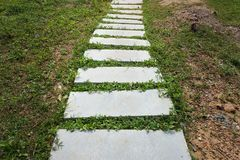 Escalera hecha del cemento Imagenes de archivo
