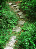 Escalera a la montaña tropical fotos de archivo