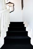 Escalera moderna de un edificio clásico con la alfombra negra Foto de archivo libre de regalías
