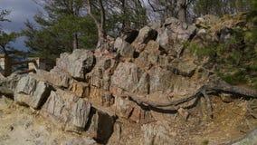 Escalera natural Foto de archivo libre de regalías