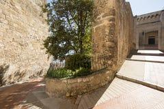 Escalera a Prince& x27; palacio de s de Mónaco Imagen de archivo