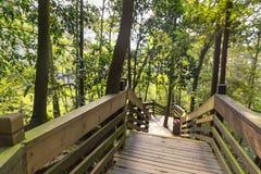Escalera que lleva abajo en el parque Fotos de archivo libres de regalías