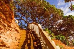 Escalera que lleva al top Imagen de archivo libre de regalías