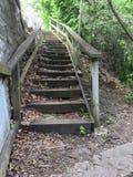 Escalera raquítica Imagen de archivo