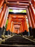 Escalera a través de las puertas de los toros en la capilla de Fushimi Inari Imagen de archivo