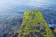 Escalera vieja al mar de Imágenes de archivo libres de regalías