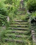 Escalera vieja cubierta por Greenery imagenes de archivo