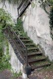 Escalera vieja cubierta por Greenery imágenes de archivo libres de regalías