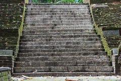 Escalera vieja de la piedra y del ladrillo cubierta en varios plantas y musgo Imagenes de archivo