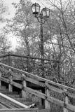 Escalera vieja Escalera de madera vieja con los elementos del hierro labrado Escalera vieja en el parque Ciudad Chernigov histori fotos de archivo libres de regalías